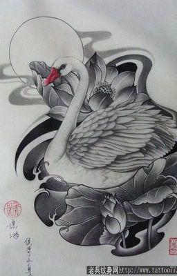 [Fic Chat Hồ Thiên Nga]
