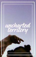 UNCHARTED TERRITORY ⇝  HEMMINGS by asdflkjhg5sos