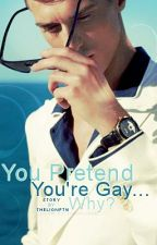You Pretend You're Gay... Why?(On Hold-Editing) by thelionftw