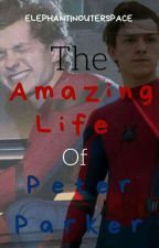 The Amazing Life Of Peter Parker (Peter Parker Short Stories) by ISurvivedNYCNotSpace