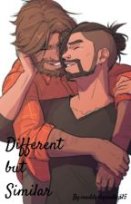 Different but Similar (McHanzo Fanfiction) by maddywillow15