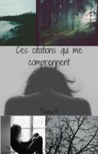 Ces citations qui me comprennent partie 4 by mm220728