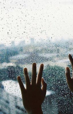 [Oneshot][Trường×Phượng] Sau cơn mưa