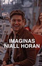 Imaginas   Niall Horan  by JayZarg