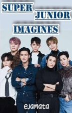 SUPER JUNIOR IMAGINES by HyukTeukHaeSungWon