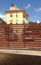 Electric Sliding Gates  | Sliding Gate - Livfuture by user15458525