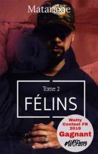 Félins - Mekra by 1995Eiram