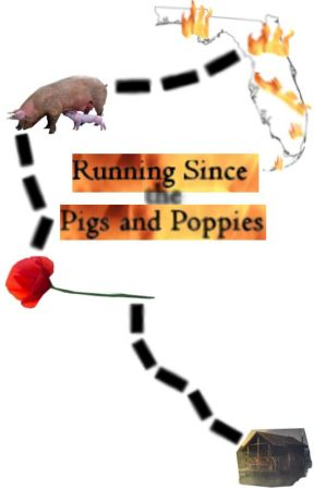 Running Since the Pigs and Poppies by TheDiabeticGM