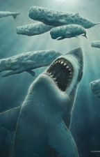 MEGALODON by charleswrites