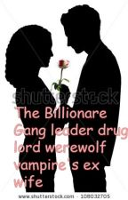 The billionaire gang leader drug lord werewolf vampire's ex wife by RubyZhang9