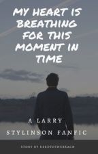 My Heart Is Breathing for This Moment in Time // Larry Stylinson by teenytinylouu