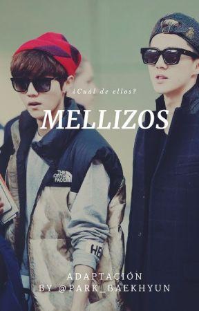 Mellizos (Luhan,Sehun y tú) by littlelauu