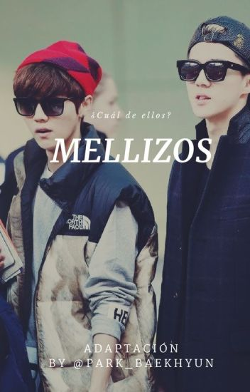 Mellizos (Luhan,Sehun y tú)
