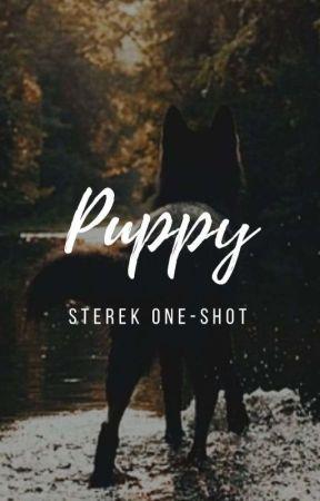 Puppy.   Sterek   by DrawMyself_
