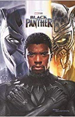 Đọc truyện [Black Panther- KillChalla couple] [Translate] Short Fanfiction