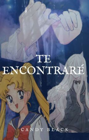 Sailor Moon New History by ame_sakura