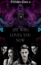 Love, Wren Book 2 of the Brothers Fellideh  series (Kansas) (Boyxboy) by susannaevanspfw