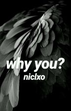 why you? // royality & analogical by niclxo