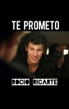 Te Prometo▪Shawn mendes▪ by rociioricarte