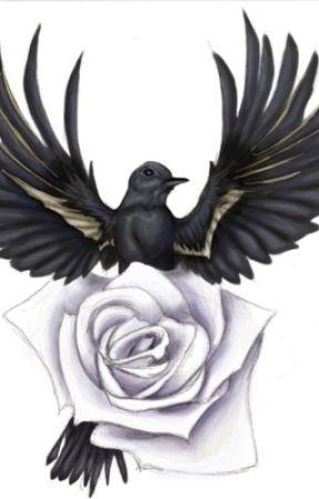 Operation Nightingale by ParadoxeZero