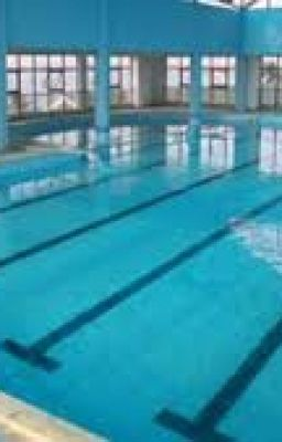 Đọc truyện (COC)Bể Bơi