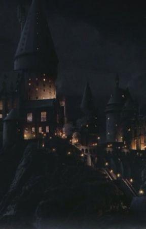 Ashlynn's Years at Hogwarts by FrostForest