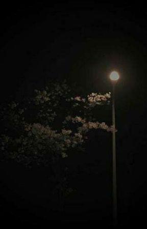 shine { multi } by daiseukis