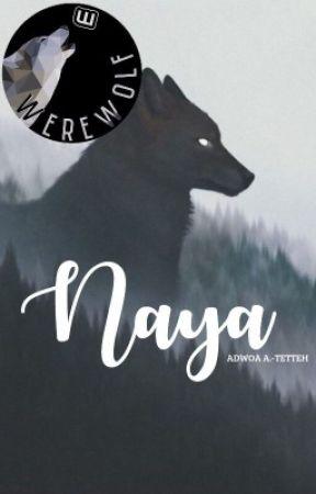 Naya by hypergraphik