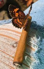 High, how are you? {CAKE} by lukeshummingbird