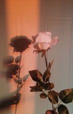roses | minsung by COLABAEK