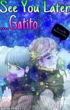 See You Later...Gatito ||Adrinette|| - Miraculous LadyBug [PAUSADA] by TheBeiiotahAracelyXd