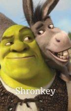 Shronkey ( Shrek x Donkey) by shrekismygod1