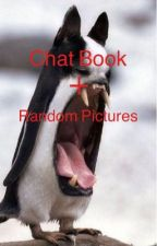 Chat Book + Random Pictures/Memes by BloodyLovin39