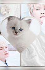 Sweet Kitty    Yoonmin ✔️ by ParkMinLexa