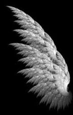 Growing Wings by existunce