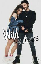 Wild Horses-Adaptada-Angestín. by DamonaTumblr