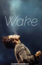 Wake • larry by harrylildimples