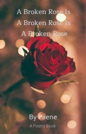 A Broken Rose Is A Broken Rose Is A Broken Rose by a_siddiqui