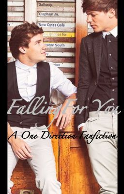 Falling For You (One Direction Fanfic)