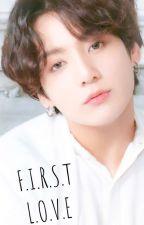 F.I.R.S.T L.O.V.E || Jungkook FF || by Sasori1561