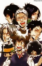 The Collaboration of Vongola Craziness (Katekyo Hitman Reborn Fanfiction) by AliceVermillion27