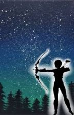 Sherwood's Sharpshooter.                 Book One of the Chronicles of Sariel by ElianTheThirteenth