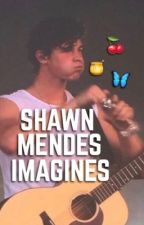 Shawn Mendes Imagines  by asphaltirwin
