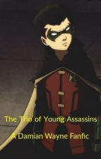 The second young assassin (A Damian Wayne Fan-fiction)  by pearlchildofposeidon