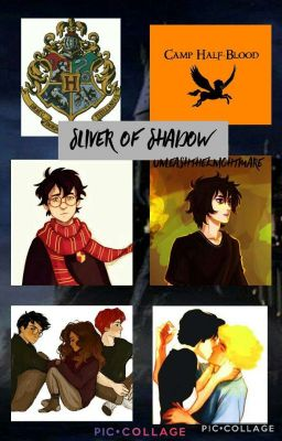 Sliver Of Shadow - Hearing Voices - Wattpad