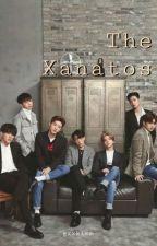 The Xanatos [BxB] [iKon fanfic] by gxxkimm
