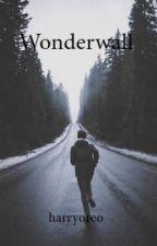 Wonderwall by harryoreo