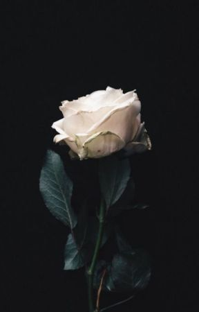 The Upside Down Theory The Man Who Took My Rose Stealing Roses