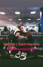 Pen Pal Letters ( Z.D.H ) by ironicchloe