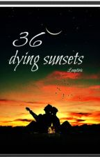 36 dying sunsets by LeaCleoB